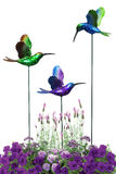 Decorative hummingbirds Royalty Free Stock Photo