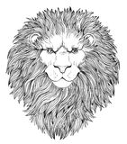 Decorative illustration of heraldic Lion Head with royal crown a Royalty Free Stock Photography