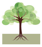 Decorative image of tree. As intersecting ovals on a white background Royalty Free Stock Photography