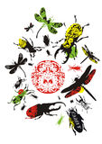 Decorative insects Stock Photo