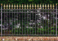 Decorative iron fence Stock Photography