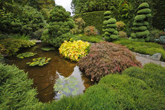 Decorative Japanese garden. Stock Images