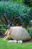 Decorative jugs in tropical garden Stock Photo