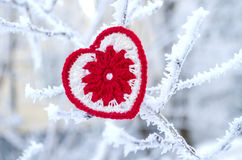 Decorative knitting heart on fir-tree branch. Winter holidays concept. Love concept background. February 14. Textile red heart on Royalty Free Stock Images