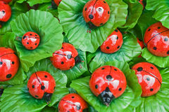 Decorative ladybirds Royalty Free Stock Image