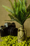 Decorative lamp with ferns and green stone on a linen background with camera. Stock Photos