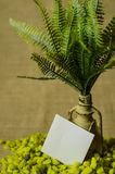 Decorative lamp with ferns and green stone and paper labels. Royalty Free Stock Image