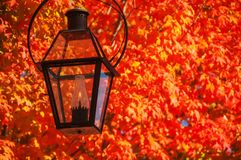 Decorative lantern with fire and red very bright colorful autumn maples trees. Sunny warm autumn day. USA. maine royalty free stock images