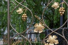 Decorative lattice in shape of grape vine in Kiev, Ukraine. Fragment of decorative lattice in shape of grape vine in Kiev, Ukraine Royalty Free Stock Images