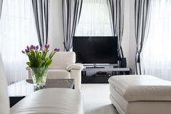 Decorative leather furniture Stock Photography