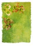 Decorative Letter Paper Stock Images
