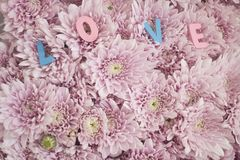 Decorative letters forming word. `love` with pink flowers Royalty Free Stock Photos