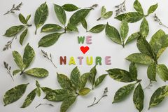 Decorative letters forming word. `protect nature` with green leaves and dried flowers Royalty Free Stock Image