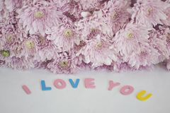 Decorative letters forming words `I love you`. With pink flowers. selective focus Royalty Free Stock Image