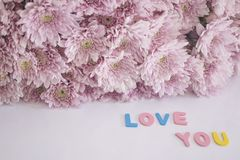 Decorative letters forming words ` love you`. With pink flowers. selective focus Stock Photo