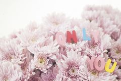 Decorative letters forming words `only you`. On pink flowers. selective focus Royalty Free Stock Photos