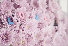 Decorative letters forming words `only you`. On pink flowers. selective focus Royalty Free Stock Images