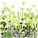 Decorative meadow Silhouettes of different plants wild, flowers Stock Photo