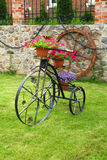 Decorative metal bicycle with flowers Royalty Free Stock Photos