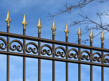 Decorative metal fence  with  ornaments . Royalty Free Stock Photography