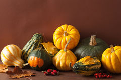 Decorative mini pumpkins and autumn leaves for halloween Royalty Free Stock Photo