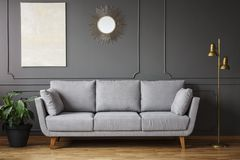 Decorative mirror and modern painting hanging on the wall with m. Olding in dark grey living room interior with fresh plant, gold lamp and bright sofa royalty free stock image