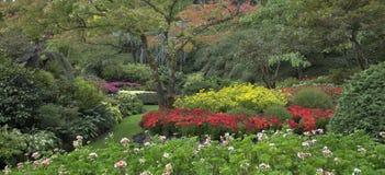 Decorative multi-colour garden. Stock Photo