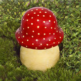 Decorative mushroom fly agaric. Stock Photography