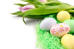 Decorative nest with dyed Easter eggs and spring flowers on white background royalty free stock photo