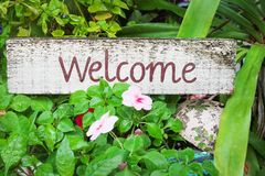 Decorative old white wood welcome sign with text brown paint in garden background stock photos