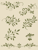Decorative olive branch Royalty Free Stock Images
