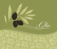 Decorative olive branch. For label, pack Stock Illustration