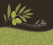 Decorative olive branch. For label, pack Royalty Free Stock Photos