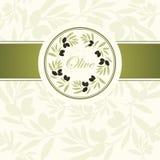 Decorative olive branch Stock Photos