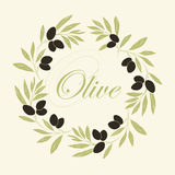Decorative olive branch Royalty Free Stock Photo