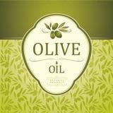 Decorative olive branch Stock Photo