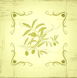 Decorative olive branch.For label, pack. Royalty Free Stock Images