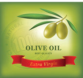 Decorative olive branch. Vector olive oil. Decorative olive branch. For label, pack. Vector olive oil Royalty Free Stock Photos