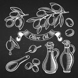 Decorative olive vector set Royalty Free Stock Photo