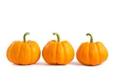 Decorative Orange Pumpkins Stock Photography