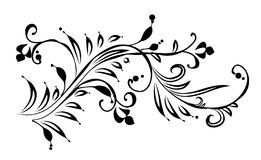 Decorative ornament. Black and white floral ornament Stock Images