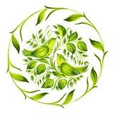 Decorative ornament herbal green circle Royalty Free Stock Image