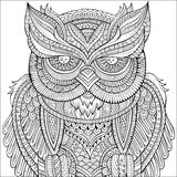 Decorative ornamental Owl background. Stock Images