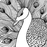 Decorative ornamental peacock. Doolle style Royalty Free Stock Photos