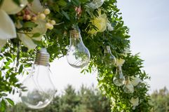 Decorative outdoor string lights hanging on tree in the garden. Light bulb decor in outdoor party.