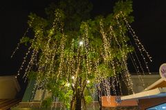 Decorative outdoor string lights hanging on tree in the garden at night time. Decorative Christmas lights - happy new year royalty free stock images