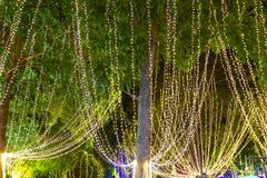 Decorative outdoor string lights hanging on tree in the garden at night time. Festivals season - decorative Christmas lights - happy new year stock photography