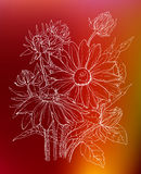 Decorative outline Daisy flowers in bouquet Royalty Free Stock Photo