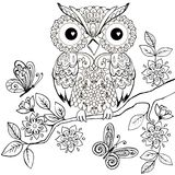 Decorative owl on a flowering branch coloring book for adults. Hand drawn Decorative owl for the anti stress coloring page.  vector illustration