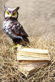 Decorative owl near stack of books Royalty Free Stock Photography